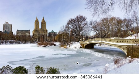 Central Park frozen winter landscape scene in Manhattan, New York City - stock photo