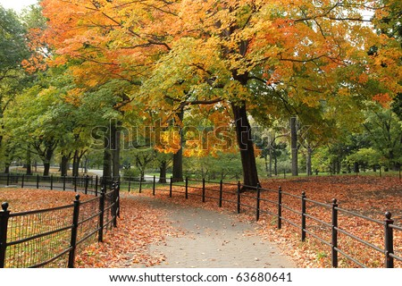 Central Park in the Autumn - stock photo