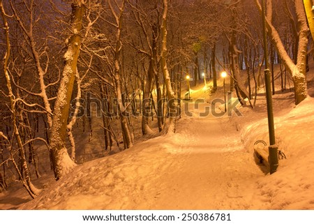 Central park in winter - stock photo
