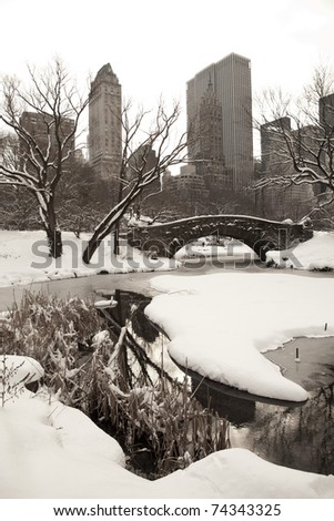 Central Park, New York. Beautiful park in beautiful city. - stock photo