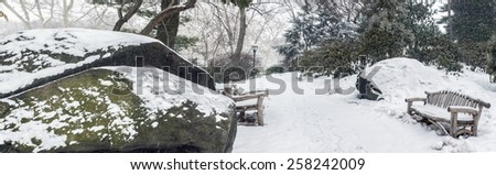 Central Park, New York City after snow storm panoramic - stock photo