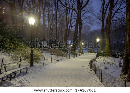 Central Park, New York City at night during snow storm - stock photo
