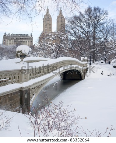 Central Park - New York City bow bridge - stock photo