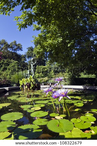 Central Park, New York City Burnett Memorian fountain in summer with water lily - stock photo