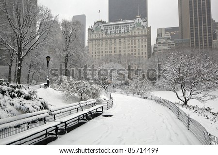Central Park - New York City during snow storm in the early morning with Plaza hotel in background - stock photo