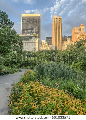 Central Park, New York City early morning in summer with Plaza hotel