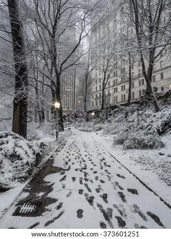 Central Park, New York City, Febuary 5th 2016, snow storm - stock photo