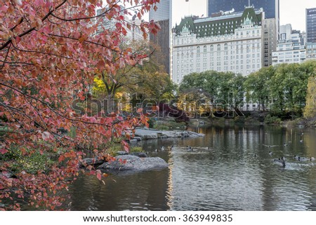 Central Park, New York City in autumn near the Plaza hotel - stock photo