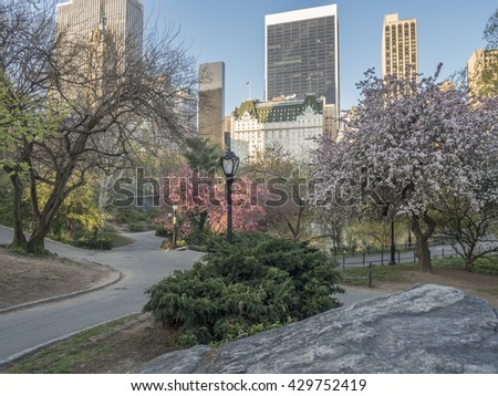 Central Park, New York City in spring