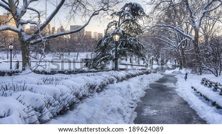 Central Park, New York City in winter after snow storm