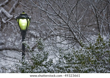 Central Park - New York City street lamp in a snow storm