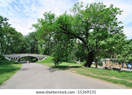 Central Park pathway in the green summer time - stock photo