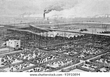"Central slaughterhouse in Chicago. Engraving by Maynar from picture by painter Taylor. Published in magazine ""Niva"", publishing house A.F. Marx, St. Petersburg, Russia, 1893 - stock photo"