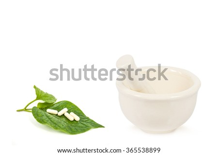 ceramic mortar,stethoscope,pill ,herb and syringe isolated on white background,abstract background for alternative medical or medical concept.