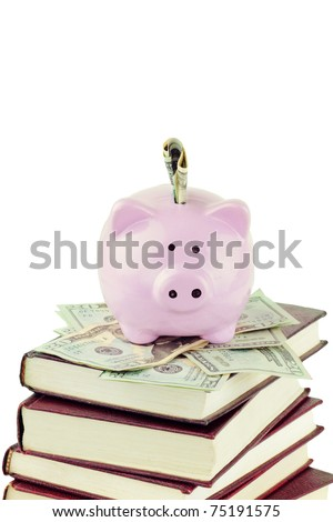 Ceramic piggy bank sitting on twenty dollar bills and a stack of books against a white background with copy space. - stock photo