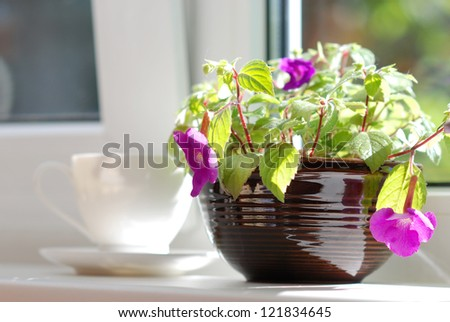 Ceramic pot with plant and white cup and saucer on the window sill - stock photo