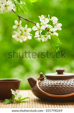 Ceramic teapot and flowering tree branch - stock photo