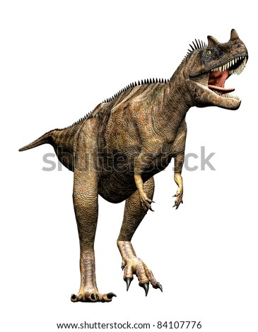 Ceratosaurus dinosaur ready to attack. Predator theropod, large head, short forelimbs, robust hind legs,  long tail. Late Jurassic Period. Isolated  white background clip art cutout illustration - stock photo
