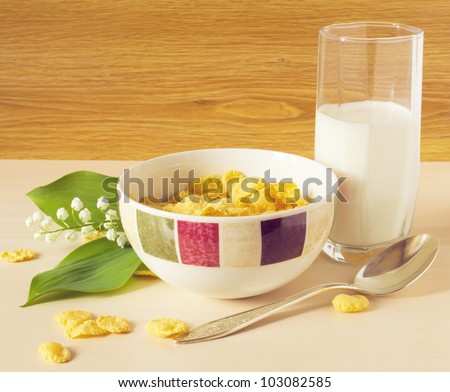 cereal with milk on the table - stock photo