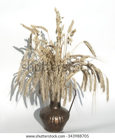 Cereals; grain; oats; wheat; rye; barley; cereal;