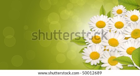CG background of flower