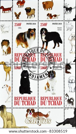 CHAD - CIRCA 2010: A stamp printed in Republic of Chad shows different dog breeds, serie, circa 2010 - stock photo