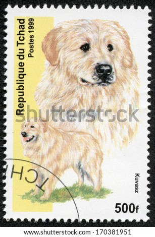 CHAD - CIRCA 1999: A stamp printed in Republic of Chad shows dog(kuvasz), circa 1999 - stock photo