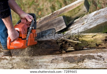 Chain saw cutting old wood