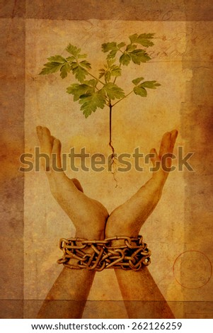 chained hands reaching for small seedling  - stock photo