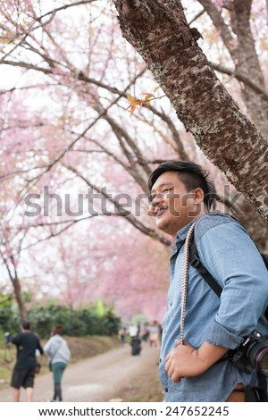 CHAINGMAI, THAILAND - JANUARY 18: An unidentified man view Prunus cerasoides garden. The festival is spring celebration of Thailand on January 18, 2015 in Chaingmai, Thailand.   - stock photo