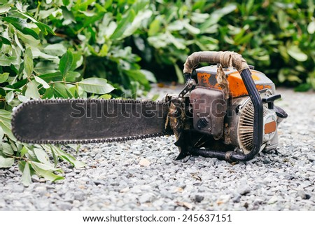 chainsaw and branch of trees - stock photo