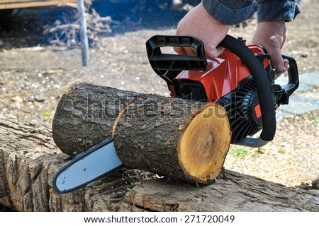 chainsaw blade cutting log of wood  - stock photo