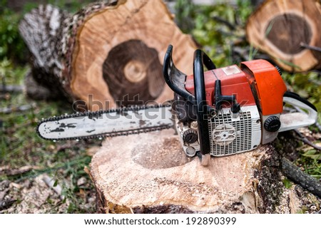 chainsaw on pile of cut wood and timber, lumberjack and sawdust - stock photo