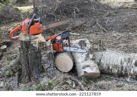 chainsaw ready to work, felled birch - stock photo