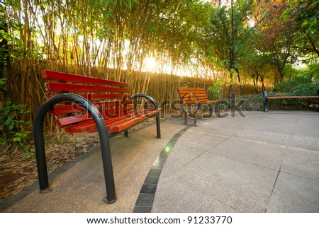 Chair and tree with sunshine - stock photo