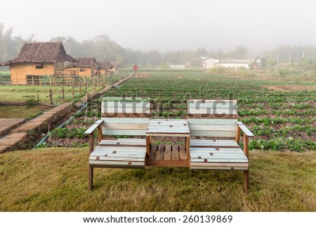 Chair in farms In the relaxation - stock photo