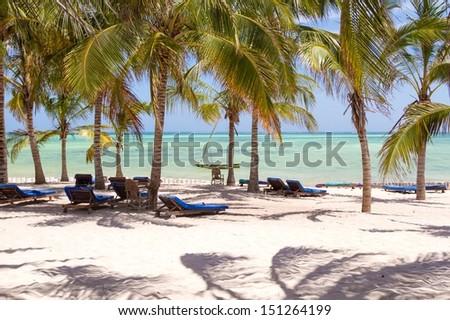 Chairs and green trees on a white sand beach. Watamu, Kenya  - stock photo