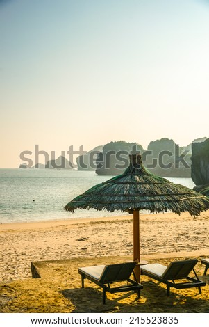 Chaise longs under palms on sandy beach with view on the ocean - stock photo