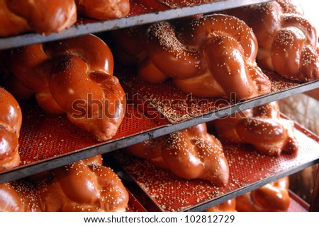 Challah Sabbath bread on display in bakery shop.