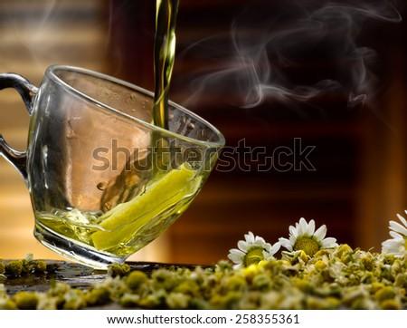 chamomile - stock photo
