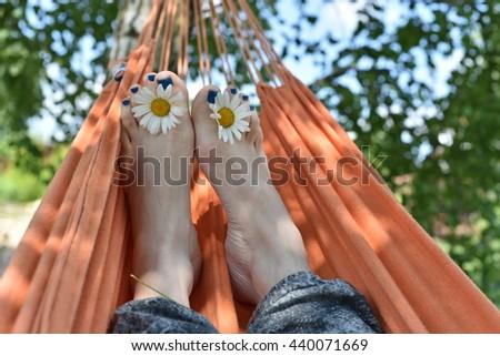 chamomile and feet pedicure - stock photo