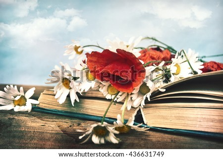 Chamomile and poppies flowers in open book.