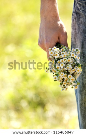 chamomile flowers in their hands - stock photo
