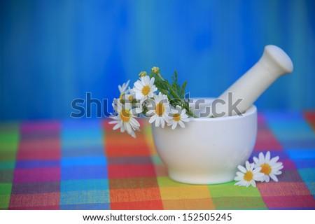 Chamomile herbs in a mortar, Alternative medicine, healthy cosmetics concept - stock photo