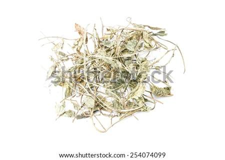 chamomile leaves on white background - stock photo