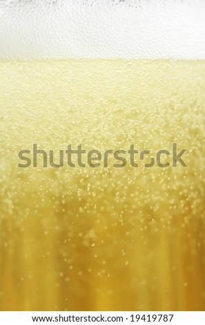 Champagne closeup - stock photo