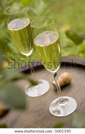 champagne in glass outside close up shoot - stock photo