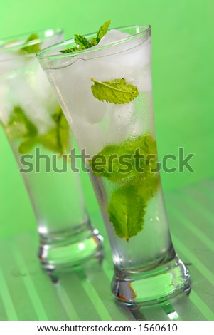 Champagne Julep in a highball glass - stock photo