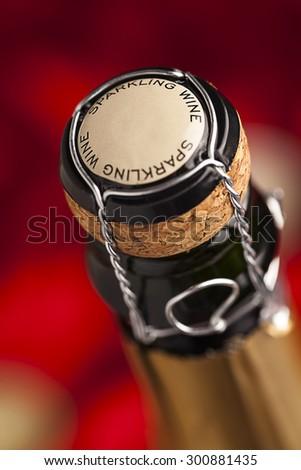Champagne wine bottle cap - stock photo