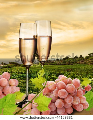 Champagne with background of seaside vineyard and pink grapes - stock photo